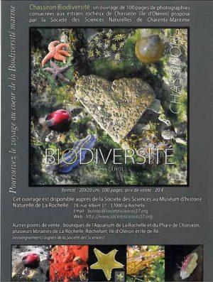 BIODIVERSITE CHASSIRON (La face cachée de l'estran) par Thierry GUYOT Supplément, novembre 2012