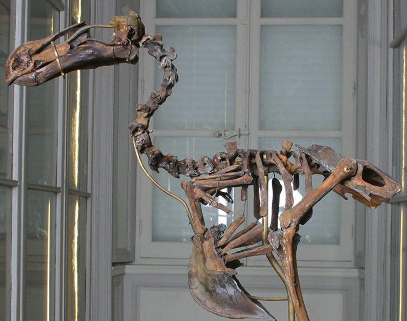 Museum La Rochelle